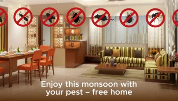 Enjoy this monsoon with your pest - free home