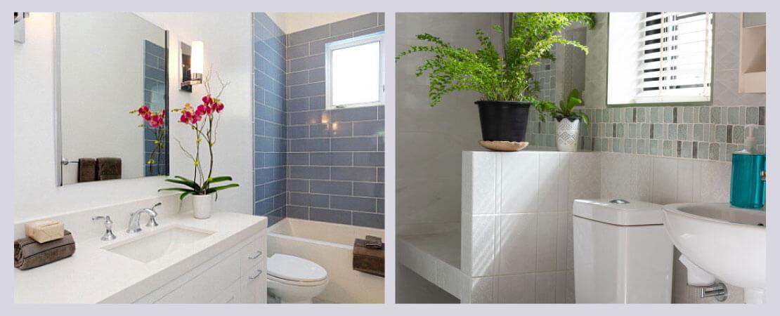 Indoor plants in bathroom will help reduce foul odour.