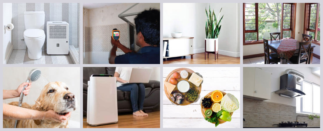 Improving indoor air quality should be given importance. Here are a few ways in which indoor air can be improved.