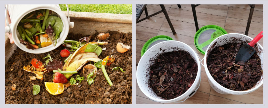 Make use of compost instead of chemical fertilizers and pesticides for your potted green plants.