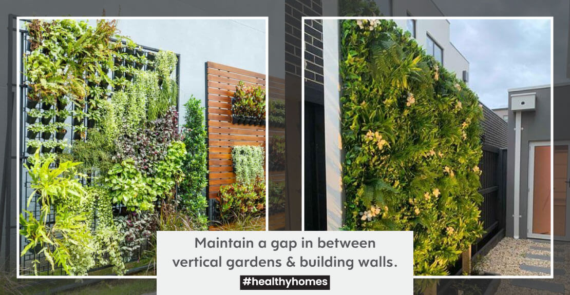 Maintain a gap in between vertical gardens & building walls to avoid potential chances of moisture intrusion/ seepage.