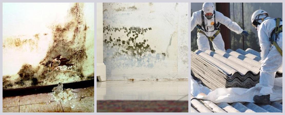Older homes may have lead-based paints, toxic moulds, asbestos in them. Any of these are harmful to your health.