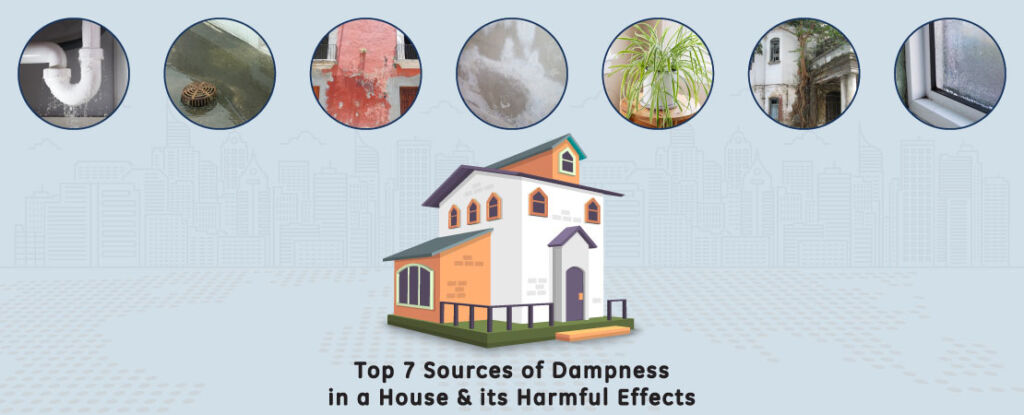 Signs of dampness or moisture are common but not the knowledge about its sources and effects. Read this article to know the sources and effects of dampness in a house.