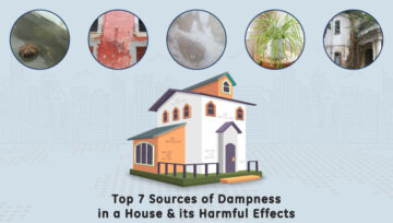 Top 7 Sources of Dampness in a House & its Harmful Effects